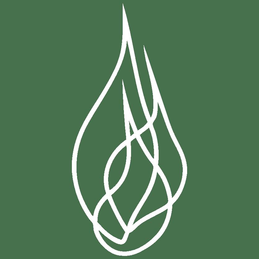 Nordic Aid